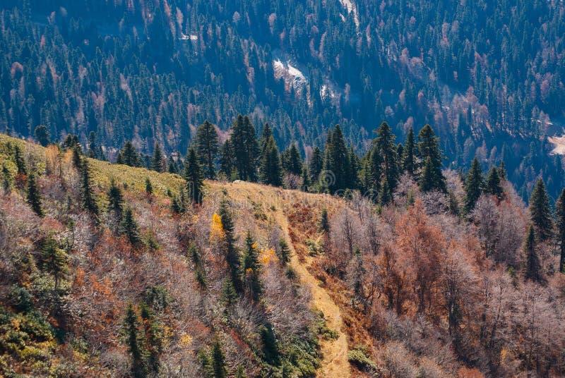 风景,在山的秋天 免版税库存照片