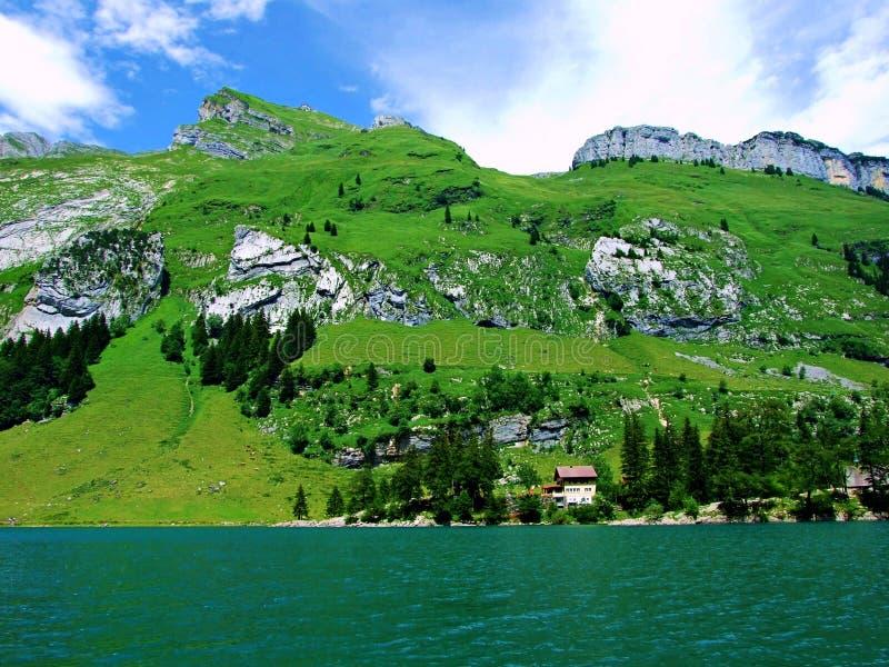 风景,天空,自然,绿色,湖,山,山,草,全景,蓝色,云彩,水,夏天,看法,树,云彩,草甸, 免版税库存图片