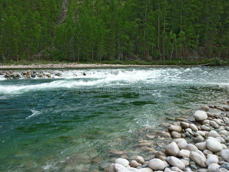 风景,河 库存图片