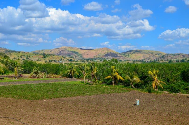 风景,维提岛海岛,斐济 免版税图库摄影