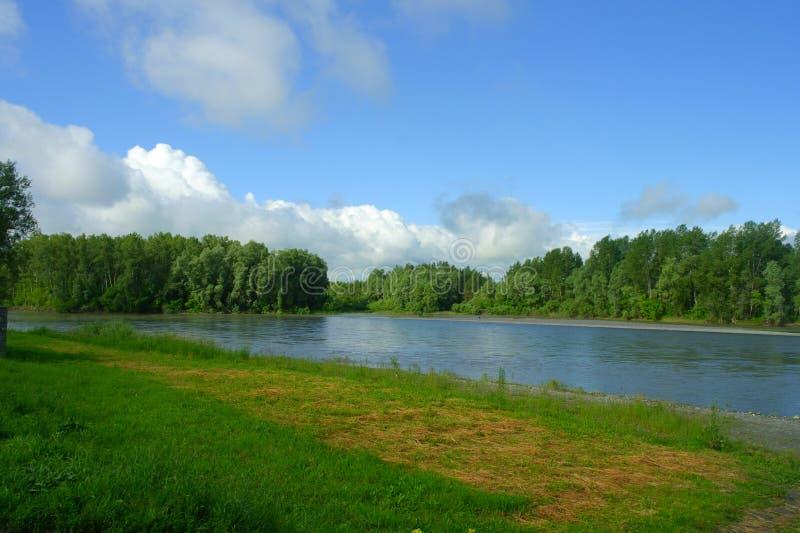 风景,蓝色河流程 沿银行是鲜绿色的草,并且在他们上的森林是与白色云彩的一天空蔚蓝 库存图片