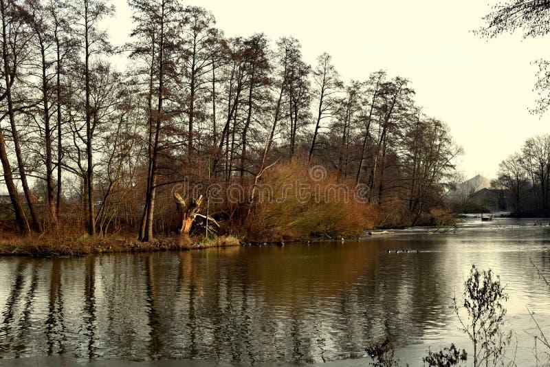 风景 河在森林里水的水源在冬天山的  冰和第一雪 库存照片