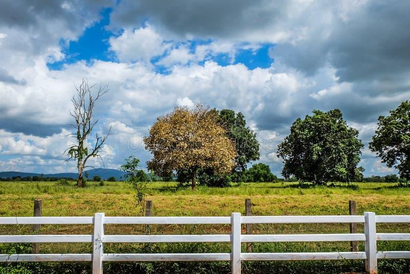 Download 风景 库存照片. 图片 包括有 云彩, 背包, 培养, 蓝色, 农田, 生态, 草甸, 田园诗, 收获, 种田 - 62539364