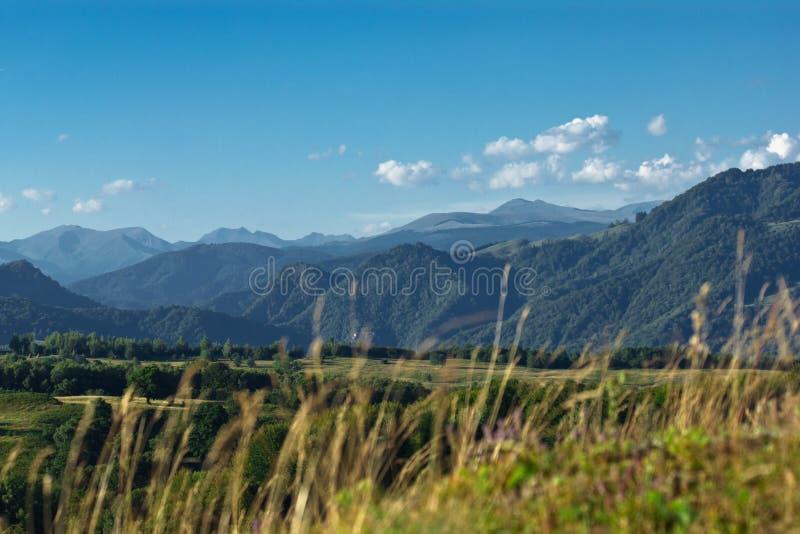 风景montain 库存图片
