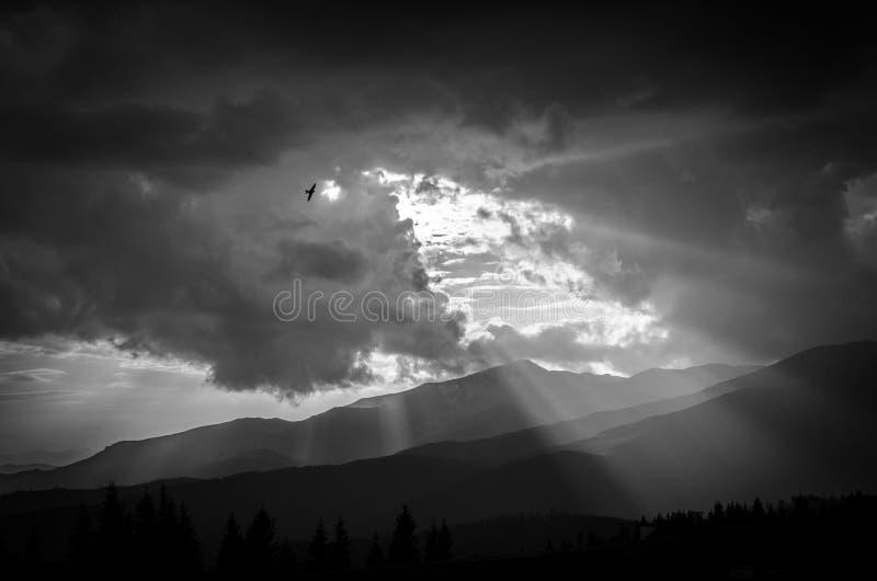 风景Transalpina 库存图片