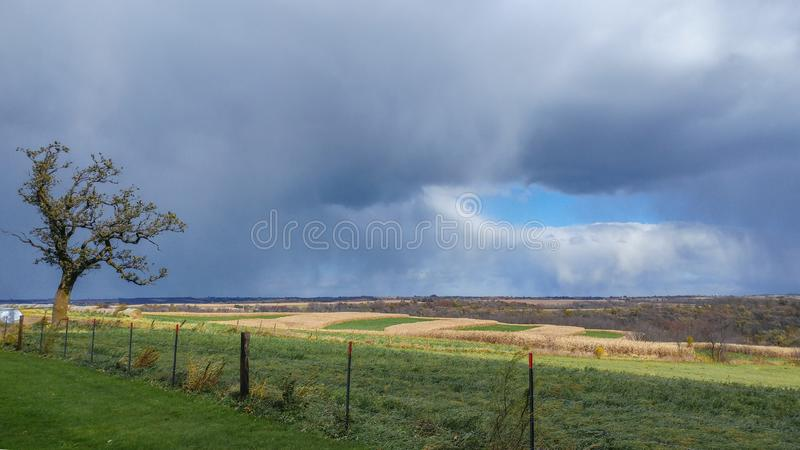 风暴日在国家-树,篱芭 库存照片