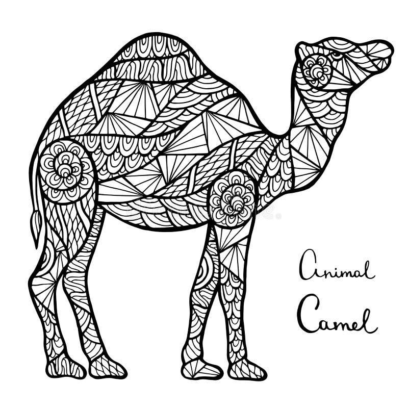 风格化传染媒介骆驼,在白色背景隔绝的zentangle 向量例证