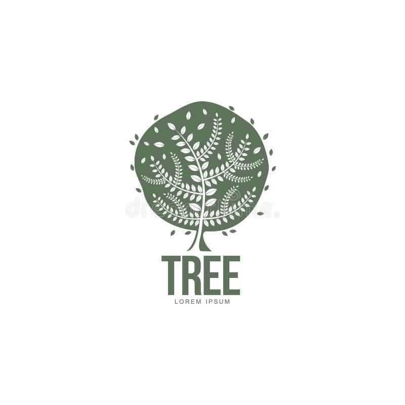 风格化圆的形状的绿色橡树商标模板,传染媒介例证 向量例证