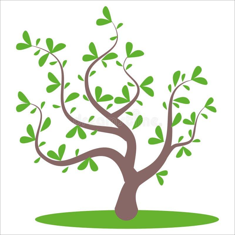 风格化抽象夏天树 向量例证