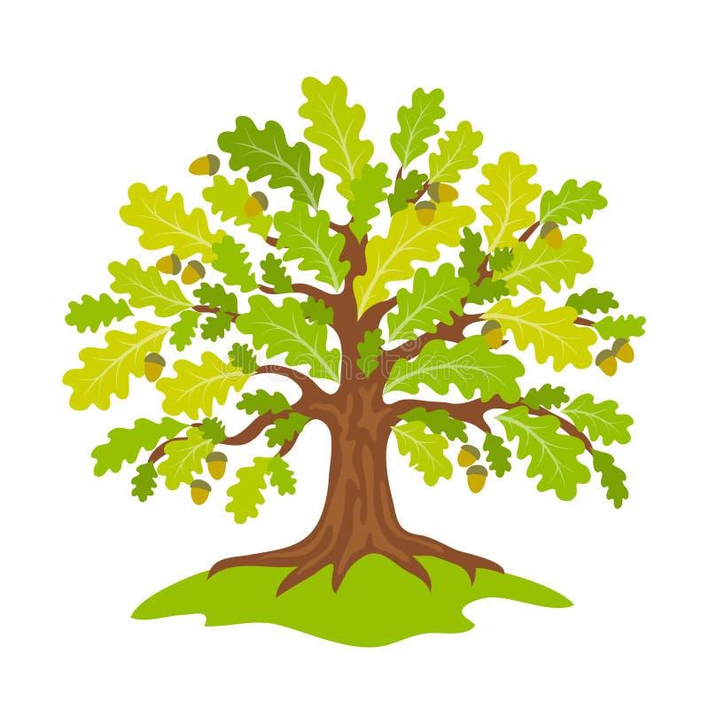 风格化橡木在夏天-传染媒介例证 库存例证