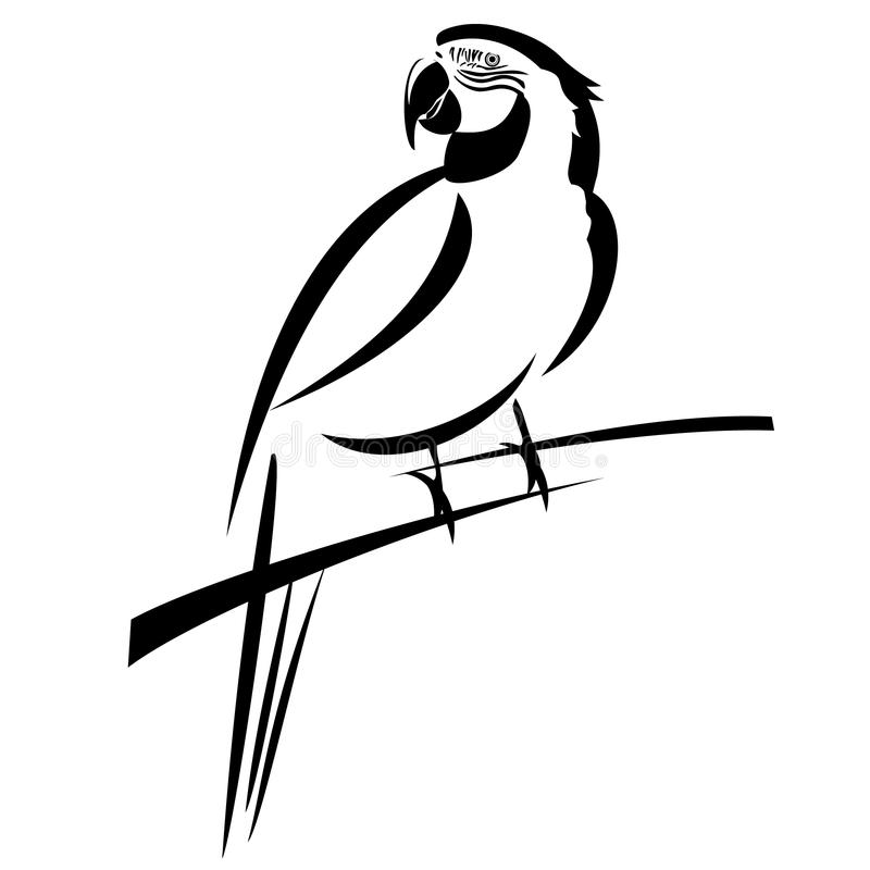 风格化金刚鹦鹉线艺术 向量例证