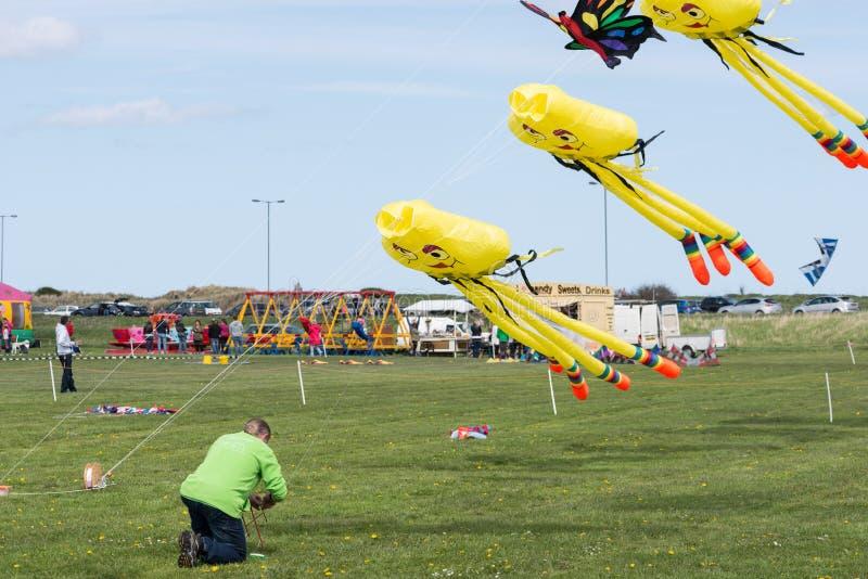 风筝在飞行中在Blyth风筝节日2015年 免版税库存照片
