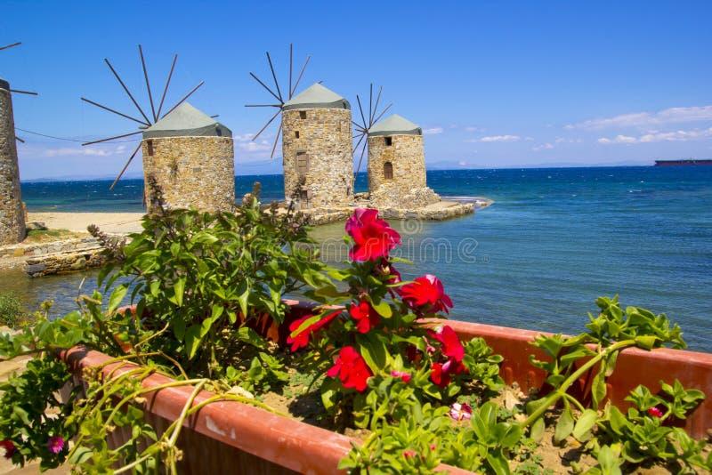 风车和花在希俄斯海岛,希腊 免版税库存照片