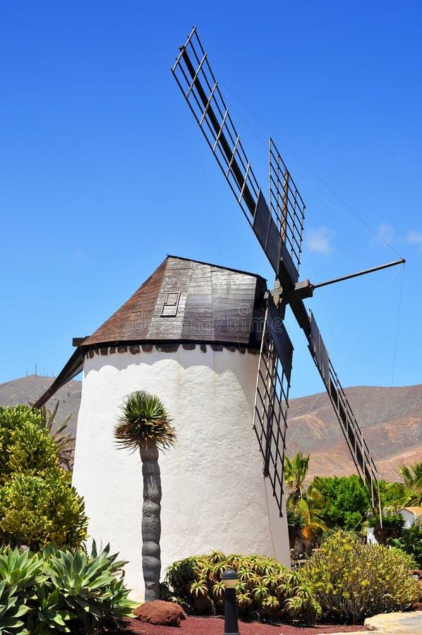 风车在安提瓜岛,费埃特文图拉岛 库存照片