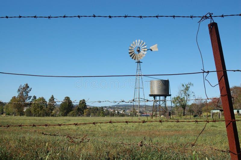 风车在小牧场 图库摄影