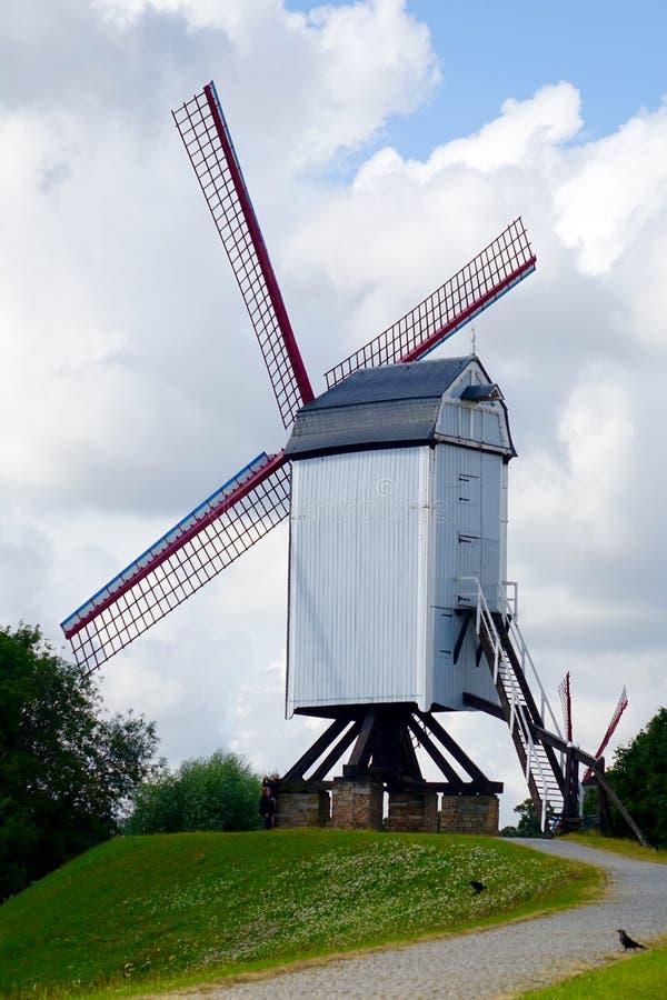 Download 风车在布鲁基 库存图片. 图片 包括有 郁金香, 葡萄酒, 农场, 能源, 天空, 欧洲, 背包, 风景 - 59109621