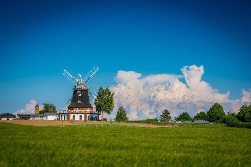 风车在粮田后的春天 免版税库存图片