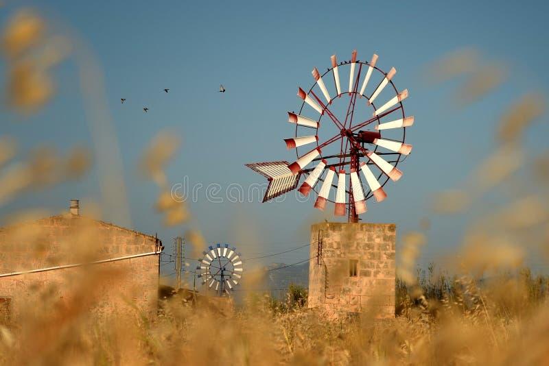 风车,马略卡 免版税图库摄影