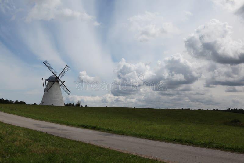 风车 爱沙尼亚 库存照片