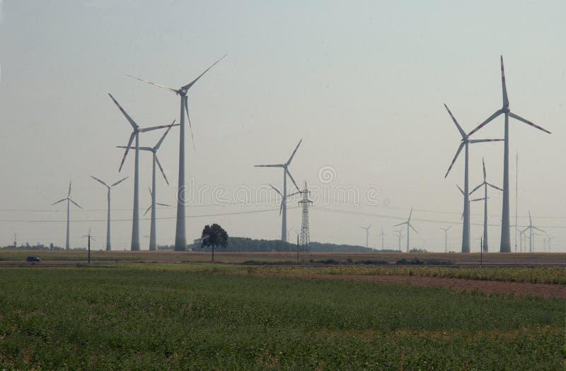 风轮机农场,在领域 免版税库存图片