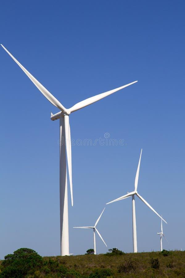 风轮机南非 库存图片