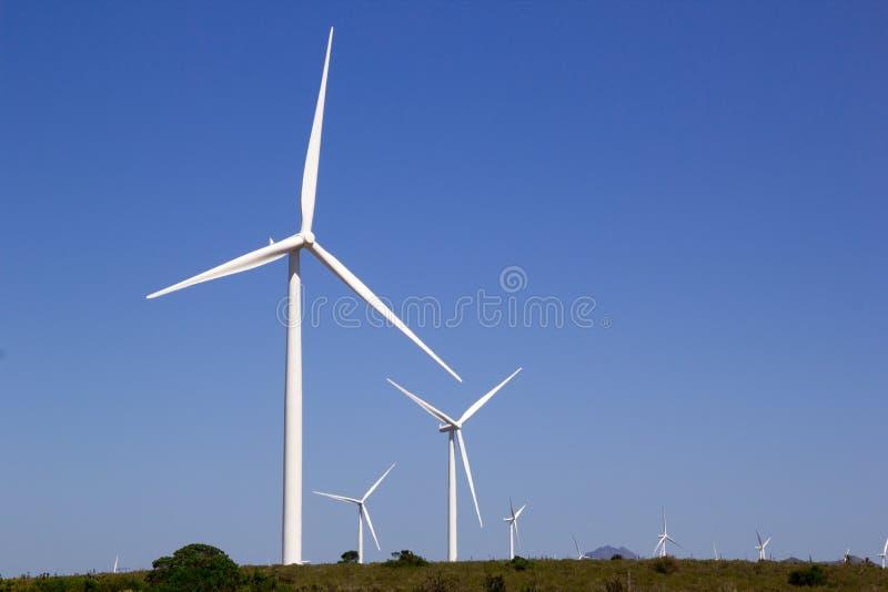 风轮机南非 图库摄影
