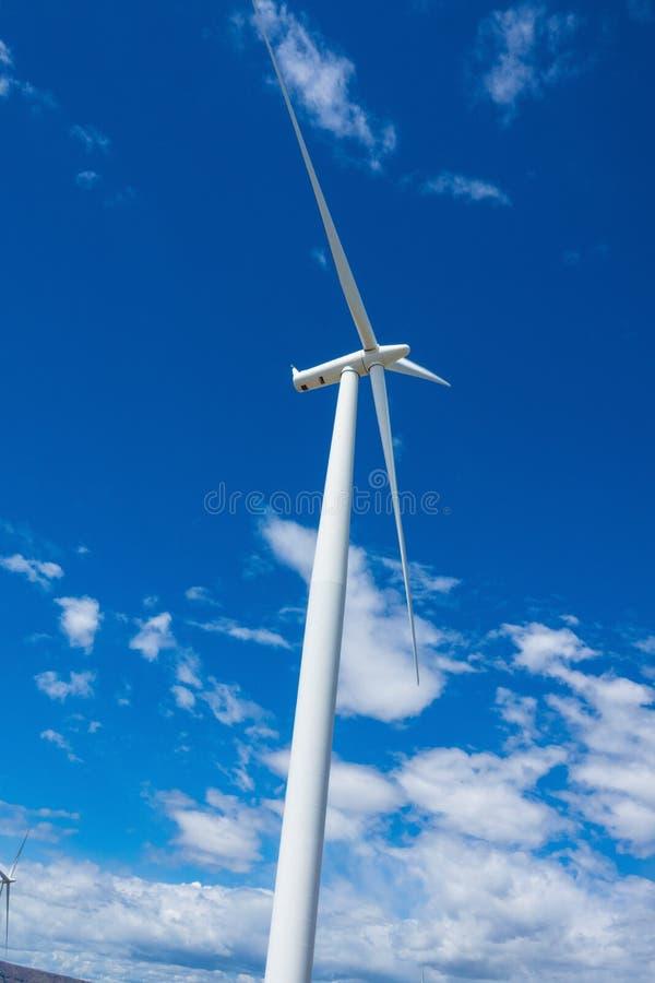 风轮机和麦田在东俄勒冈 免版税图库摄影