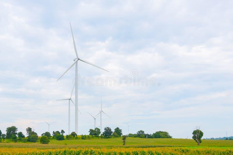 风轮机在领域、天空蔚蓝和云彩背景做了可再造能源在猜也奔府泰国 免版税库存照片