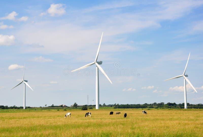 风轮机蓝色被覆盖的天空 免版税库存照片