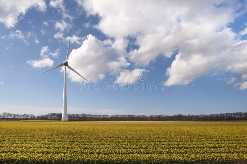风轮机,新的能承受的能量 免版税库存图片