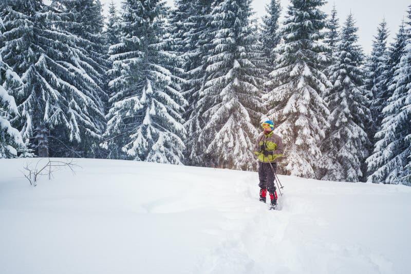 风镜和雪靴的人在杉木森林边缘 免版税图库摄影