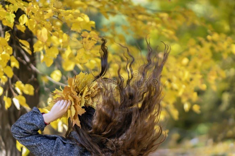 风长期开发棕色头发女孩回到我们,在叶子秋天,季节期间的公园 图库摄影