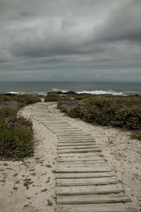 风雨如磐海滩的日 免版税库存图片