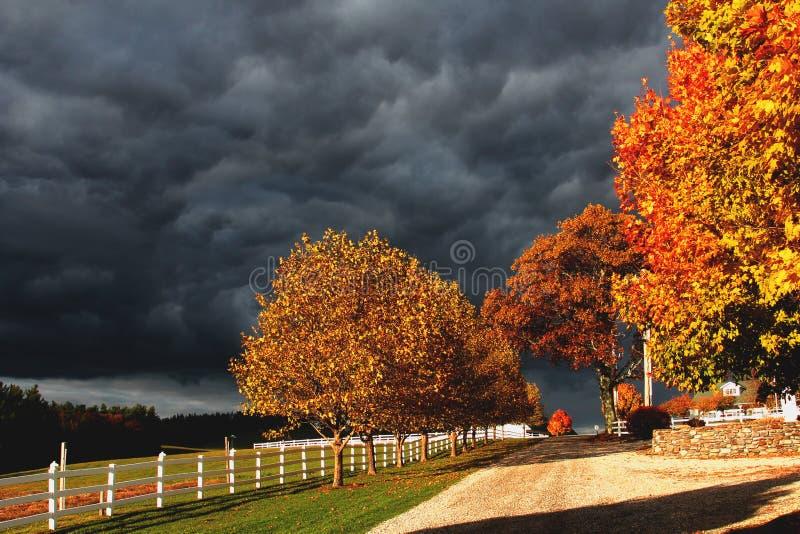 风雨如磐的天空和秋叶 图库摄影
