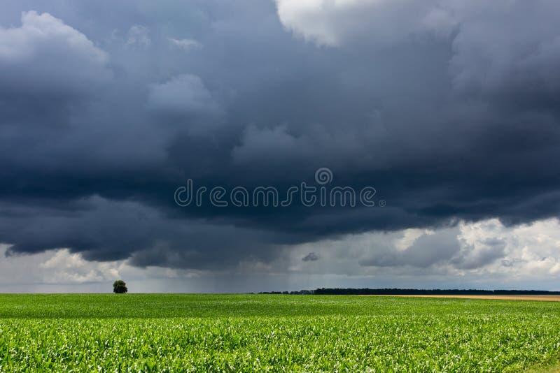 风雨如磐的天空和领域 图库摄影