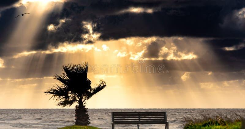 风雨如磐的早晨在海岸和与很多风 库存图片