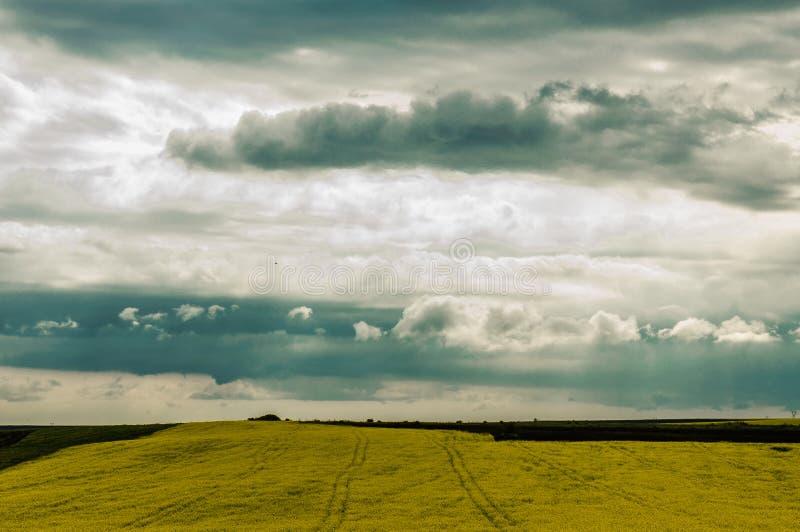 风雨如磐的早晨5 库存图片
