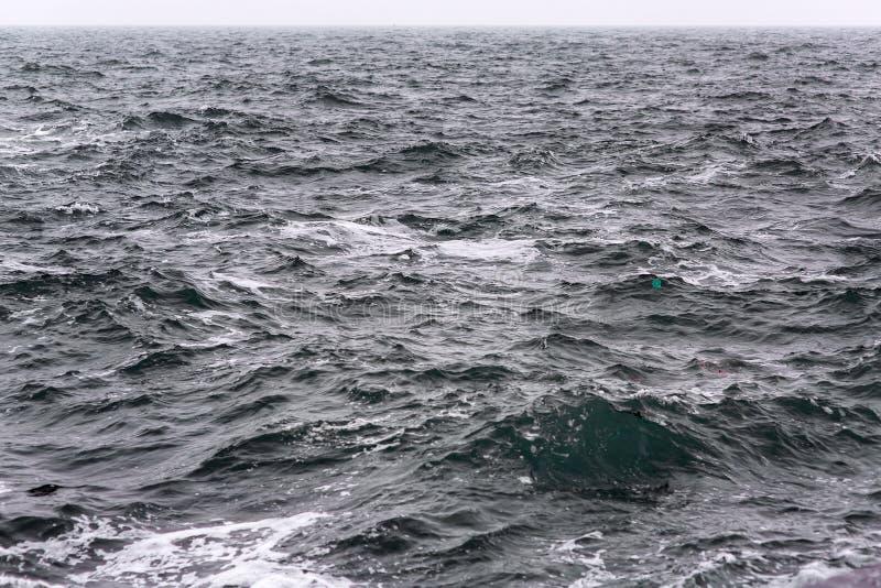 风雨如磐的波浪海景  库存照片