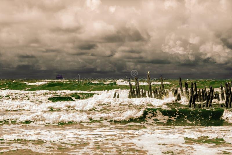 风雨如磐的海滨 免版税库存图片