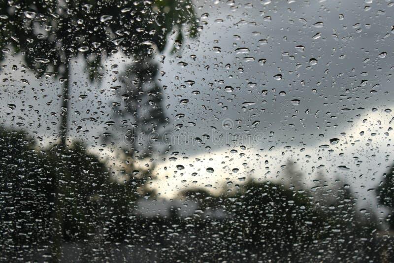 风雨如磐的热带风景通过与雨的窗口投下背景 免版税库存图片