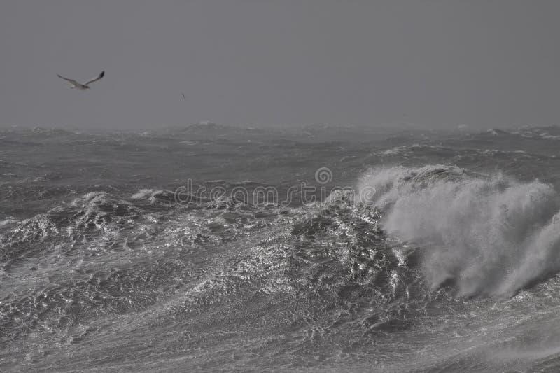 风雨如磐的碎波 库存照片