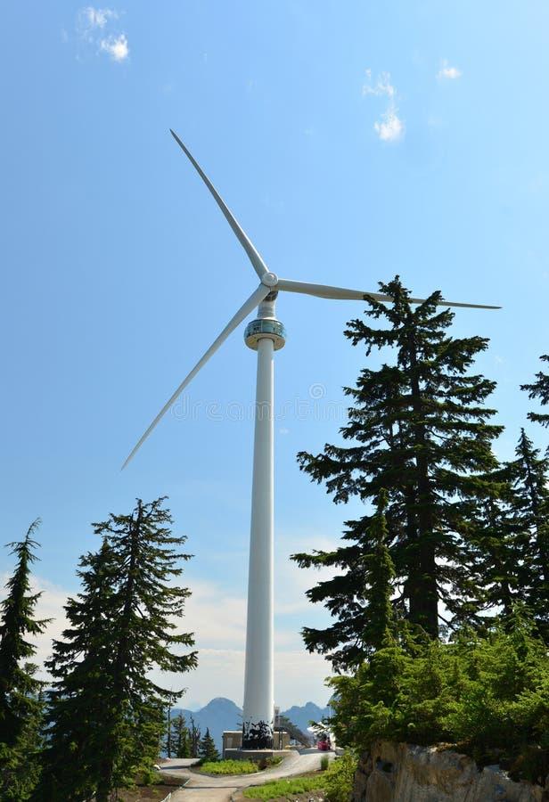 风,在松鸡山,温哥华的涡轮的眼睛 免版税库存图片