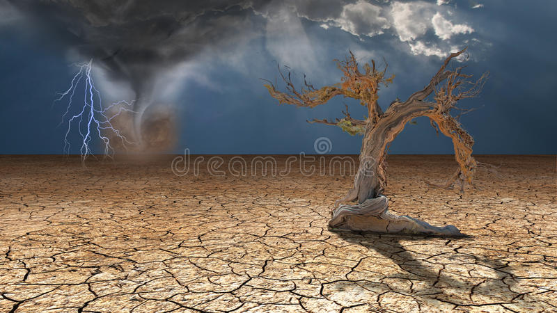 风暴愤怒在沙漠 库存例证