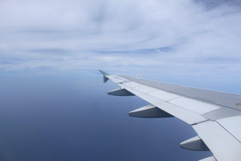 飞机翼 免版税库存照片
