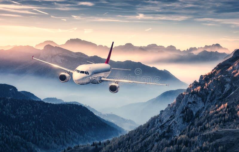 飞机飞行在雾的山在美好的日落 免版税库存图片