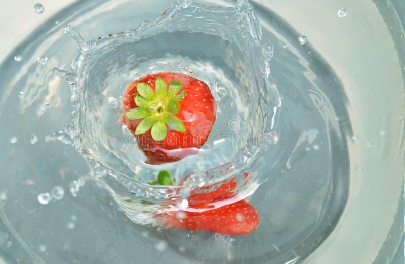 飞溅入水的草莓 免版税库存图片