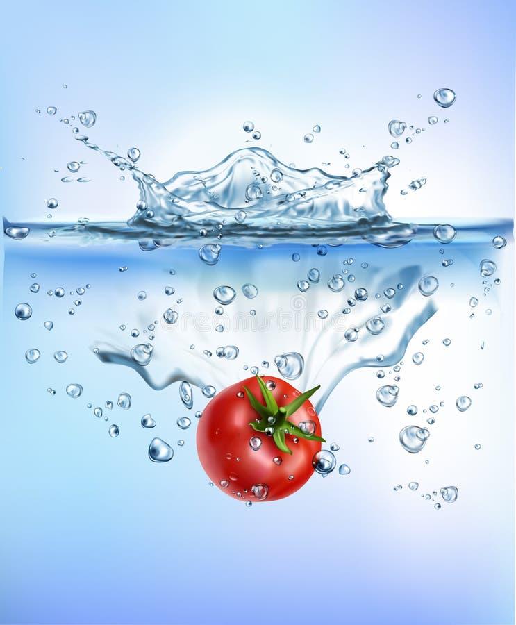 飞溅入蓝色清楚的水飞溅健康食品饮食生气勃勃概念被隔绝的白色背景的新鲜蔬菜 向量例证