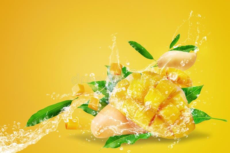 飞溅在新鲜的切的芒果果子的水与在黄色背景隔绝的芒果立方体 免版税库存照片