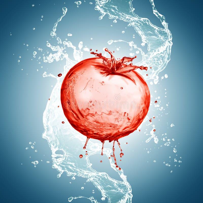 飞溅在水中的蕃茄 免版税库存图片