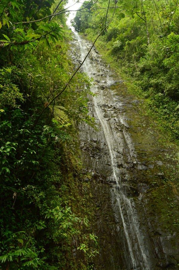 飞溅在面孔的大瀑布 库存照片